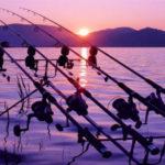 caccia-e-pesca-forli