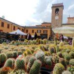 La primavera in piazza – San Giovanni in Marignano (RN) 21/22 Marzo 2020
