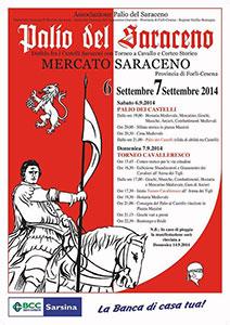 palio-del-saraceno-2014-p